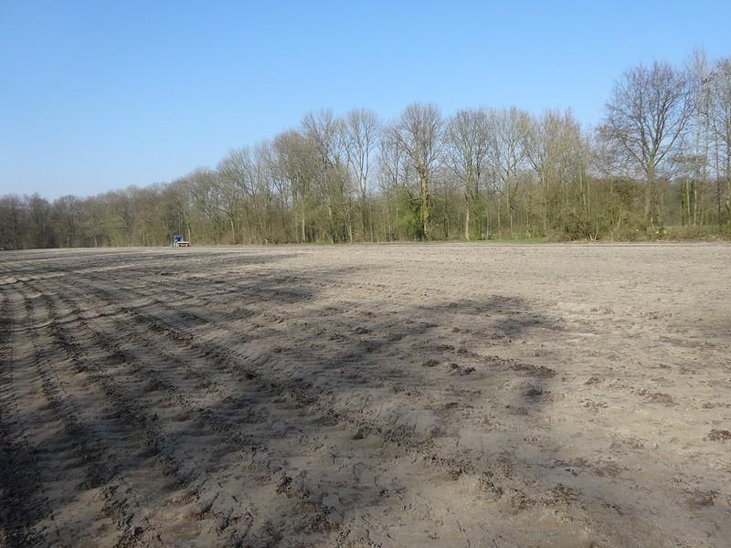 Funderen grasveld Amsterdamse Bos